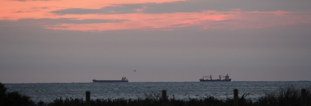 Bulk shipping is at its cheapest point in some time. Photo: Oliver Probert