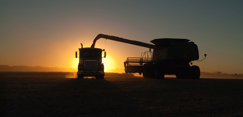 The CBH Group will keep its supply chain fees flat in 2019-20, following the $4 per tonne reduction provided to growers and marketers least year.