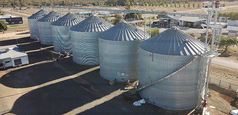 Allied Grain Systems installed an innovative conveying solution to slash Fellows Bulk Transport's labour hours and costs.