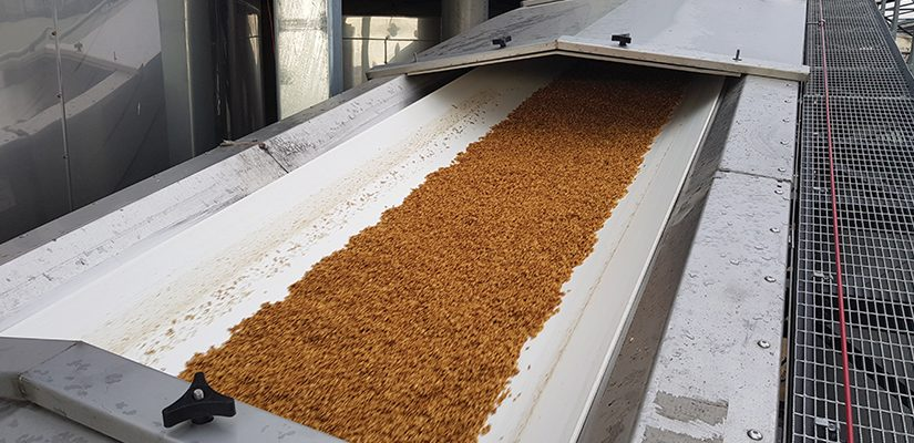 Aerobelt's air-based conveyors are helping food producers improve hygiene, reduce maintenance and cut down on energy costs.