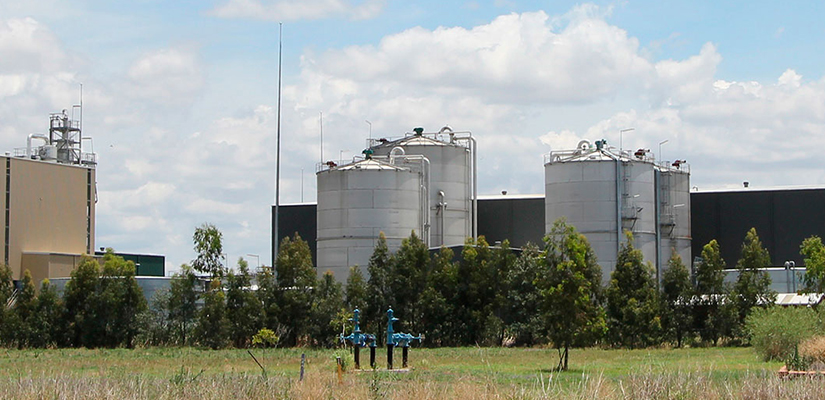 Dalby Bio-Refinery has reopened to manufacture industrial grade ethanol to be used in hand sanitiser, hand wash and surface disinfectant products during the COVID-19 pandemic.