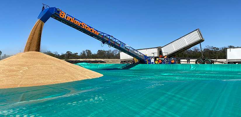 Grain handling equipment specialist Kilic Engineering has recently completed development of its latest stacker, the Super Roo.